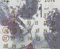 2015年12月の営業日