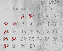 2017年11月の営業日
